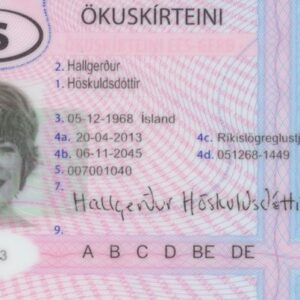 Iceland Drivers License for Sale Online